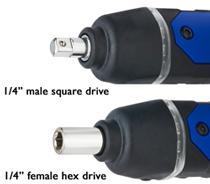 male - Female